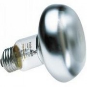 LAMPE/AMPOULE REPTI BASKING SP 60W -ZM ZOOMED